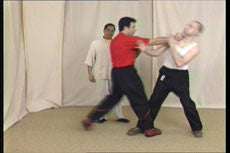 Wing Tsun DVD by Leung Ting 1