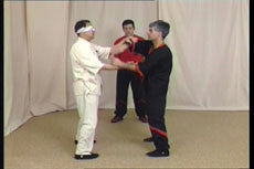 Wing Tsun DVD by Leung Ting 3