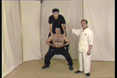 Wing Tsun DVD by Leung Ting 2