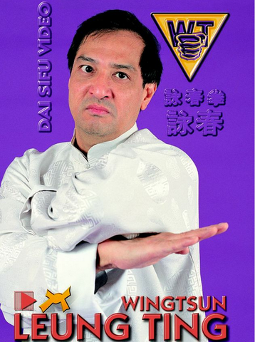 Wing Tsun DVD by Leung Ting 5