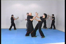 Wing Tsun Chi Sao DVD with Victor Gutierriez 4