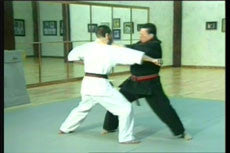 Shoryn Ryu Tai Jitsu DVD with Christian Harfouche 1