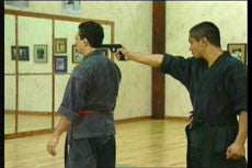 Shoryn Ryu Tai Jitsu DVD with Christian Harfouche 2