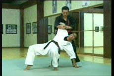 Shoryn Ryu Tai Jitsu DVD with Christian Harfouche 3