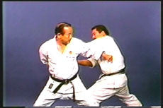 Shotokan Kata Series Vol 1 DVD by Masataoshi Nayama 3