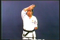 Shotokan Kata Series Vol 1 DVD by Masataoshi Nayama 2