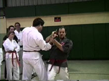 George Dillman New Orleans Seminar DVD #7 - Budovideos
