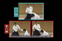 Aikido Renshinkai First Step DVD with Tsutomu Chida 6