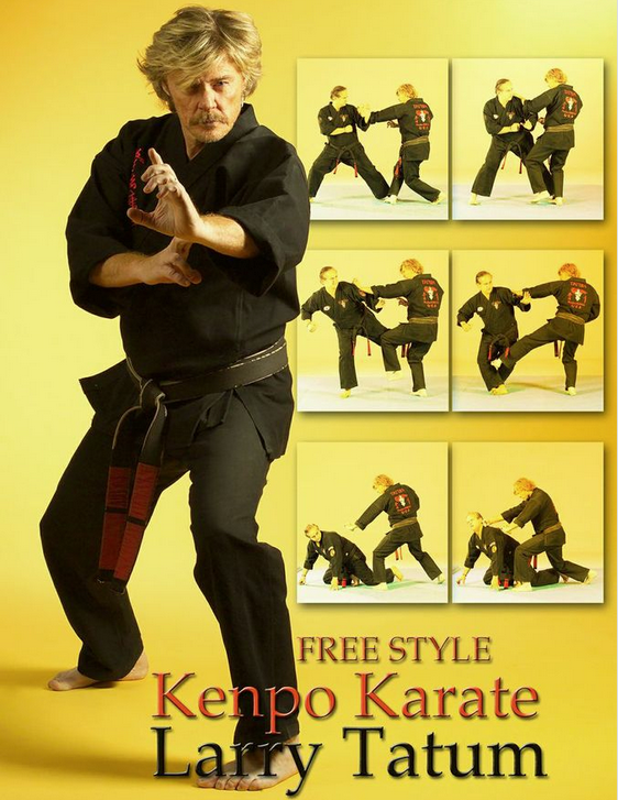 Free Style Kenpo Karate DVD by Larry Tatum 1