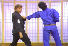Kenpo by Larry Tatum 23 DVD Set 2