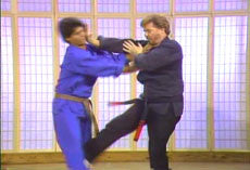 Kenpo by Larry Tatum 23 DVD Set 3