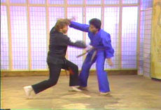 Kenpo by Larry Tatum 23 DVD Set 4