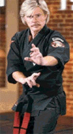 Kenpo by Larry Tatum 23 DVD Set - Budovideos Inc