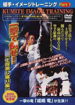 Kyokushin Karate Kumite Image Training DVD 1 1