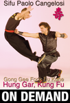 Hung Gar Gong Gee Fook Fu Kune vol 1 with Paolo Cangelosi (On Demand) - Budovideos Inc