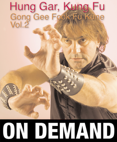 Hung Gar Gong Gee Fook Fu Kune vol 2 with Paolo Cangelosi (On Demand) - Budovideos Inc