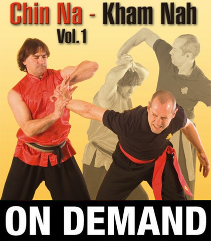 Chin Na: Kham Nah Vol 1 with Paolo Cangelosi (On Demand) - Budovideos Inc