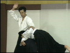 Master of Aiki DVD 1 by Kogen Sugasawa 2