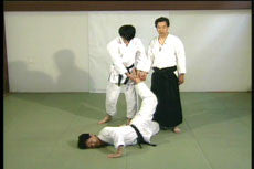 Master of Aiki DVD 2 by Kogen Sugasawa 3