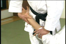 Master of Aiki DVD 2 by Kogen Sugasawa 5