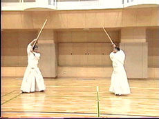 Shinto Muso Ryu: Technical Skills Vol 1 by Kenji Matsui DVD 2