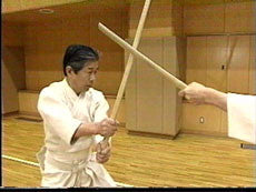 Shinto Muso Ryu: Technical Skills Vol 2 by Kenji Matsui DVD 2
