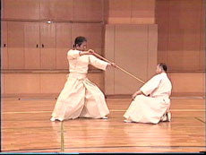 Shinto Muso Ryu: Technical Skills Vol 3 by Kenji Matsui DVD 5
