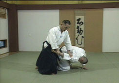 Aikido for Beginners DVD by Tsuneo Ando 2