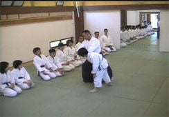 Advanced Level Aikido DVD by Tsuneo Ando - Budovideos