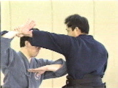 World of Koryu Bujutsu DVD 3 by Jun Osano 4
