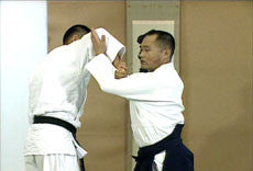 Advanced Aikido DVD  by Tsuneo Ando 6