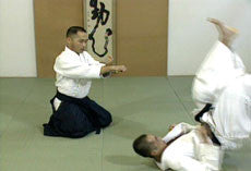 Advanced Aikido DVD  by Tsuneo Ando 2