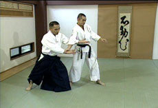 Aikido for Beginners DVD by Tsuneo Ando - Budovideos