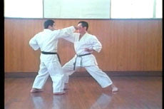 Goju Ryu DVD with Morio Higaonna 5