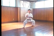 Goju Ryu DVD with Morio Higaonna 2