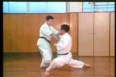 Goju Ryu DVD with Morio Higaonna 4