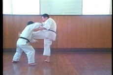 Goju Ryu DVD with Morio Higaonna 3