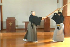 Secrets of Ono Ha Itto Ryu Kenjutsu DVD with Takemi Sasamori 7