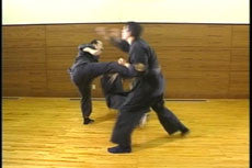 Jujutsu Self Defense DVD 1 by Shoto Tanemura 4