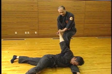 Jujutsu Self Defense DVD 2 by Shoto Tanemura 2