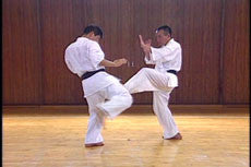 Shintaiiku-do Karate DVD 1 by Makoto Hirohara 3