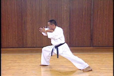 Shintaiiku-do Karate DVD 1 by Makoto Hirohara 4