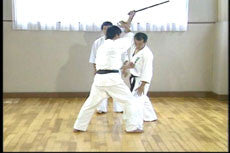 Shintaiiku-do Karate DVD 2 by Makoto Hirohara 2