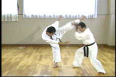 Shintaiiku-do Karate DVD 2 by Makoto Hirohara 4