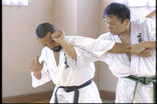 Shintaiiku-do Karate DVD 2 by Makoto Hirohara 3