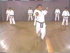 Shotokan Karate Basics DVD 2