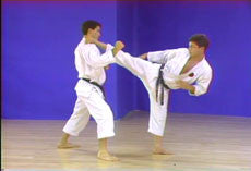 Goju Ryu Karate 24 DVD Set by Higaonna 5