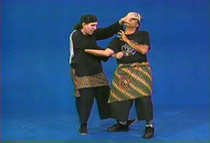Pencak Silat 12 DVD Set by William Sanders 3
