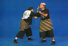 Pencak Silat 12 DVD Set by William Sanders 4