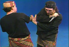 Pencak Silat 12 DVD Set by William Sanders 2